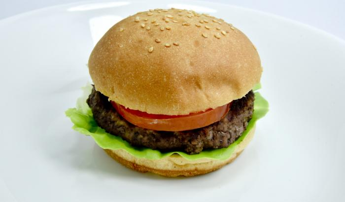 Hamburger-